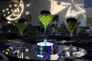 Moonlight & Martinis: Benefitting Al'z Place